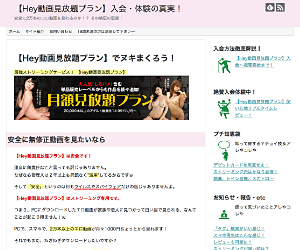 【Hey動画見放題プラン】入会・体験の真実!