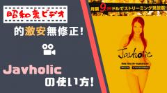 【Javholic】の使い方解説